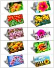 For the Love and Romance of Flowers Gift Greeting Card Boxed Set